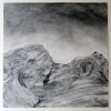 Rebecca Suss. Post #2, 2008. graphite, conte and charcoal on paper. 12 x 12 inches.