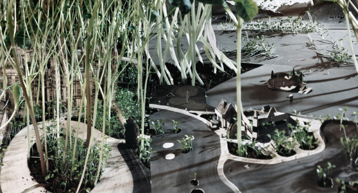 Landscaping II (part 3)
