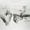 Chris Domenick. Massachusetts, 2007. graphite and pen on paper. 75 x 51 inches