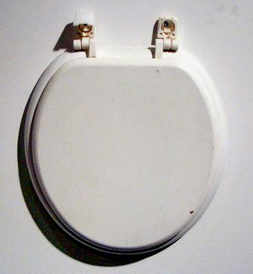 Sara Hausner-Levine. Ceramic toilet seat.