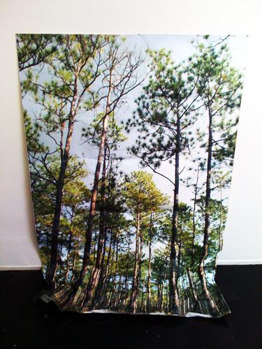 Casey Lynch. Direction. 2009. digital print on vinyl. 34 x 60 inches.