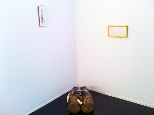 Dana Williams. FREE RANGE Installation View.